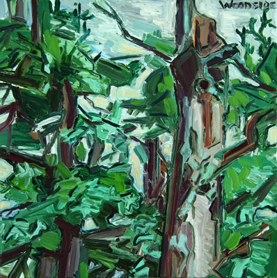 Spruce Tops, 2006 -